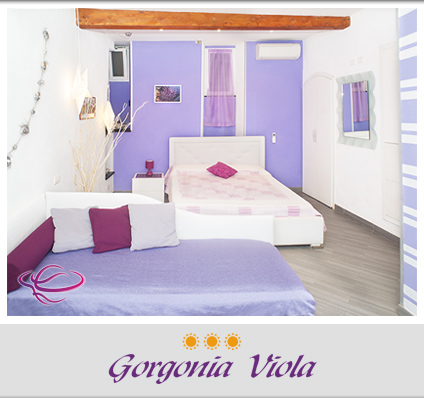 Apartment Gorgonia Viola